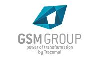 GSM Group